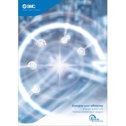 Energy Efficiency (DE)